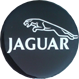 Kołpaki do Jaguar